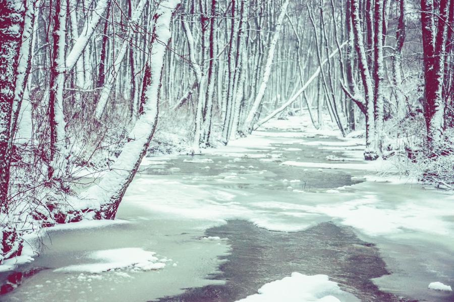Vinterlandskap fotografering1