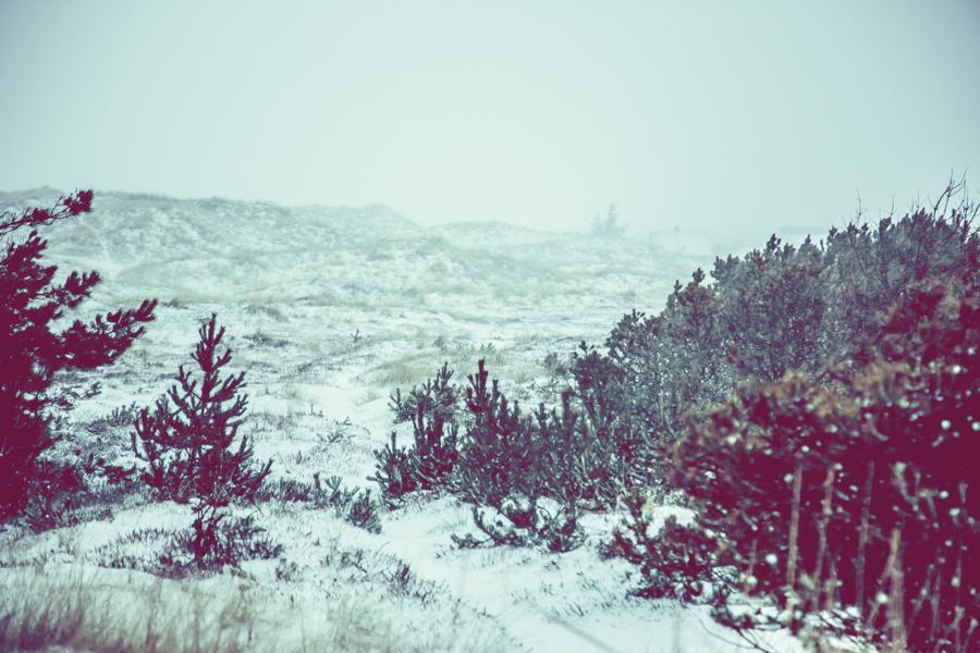 Vinterlandskap fotografering6