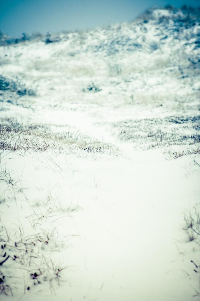 Vinter.. igen-3