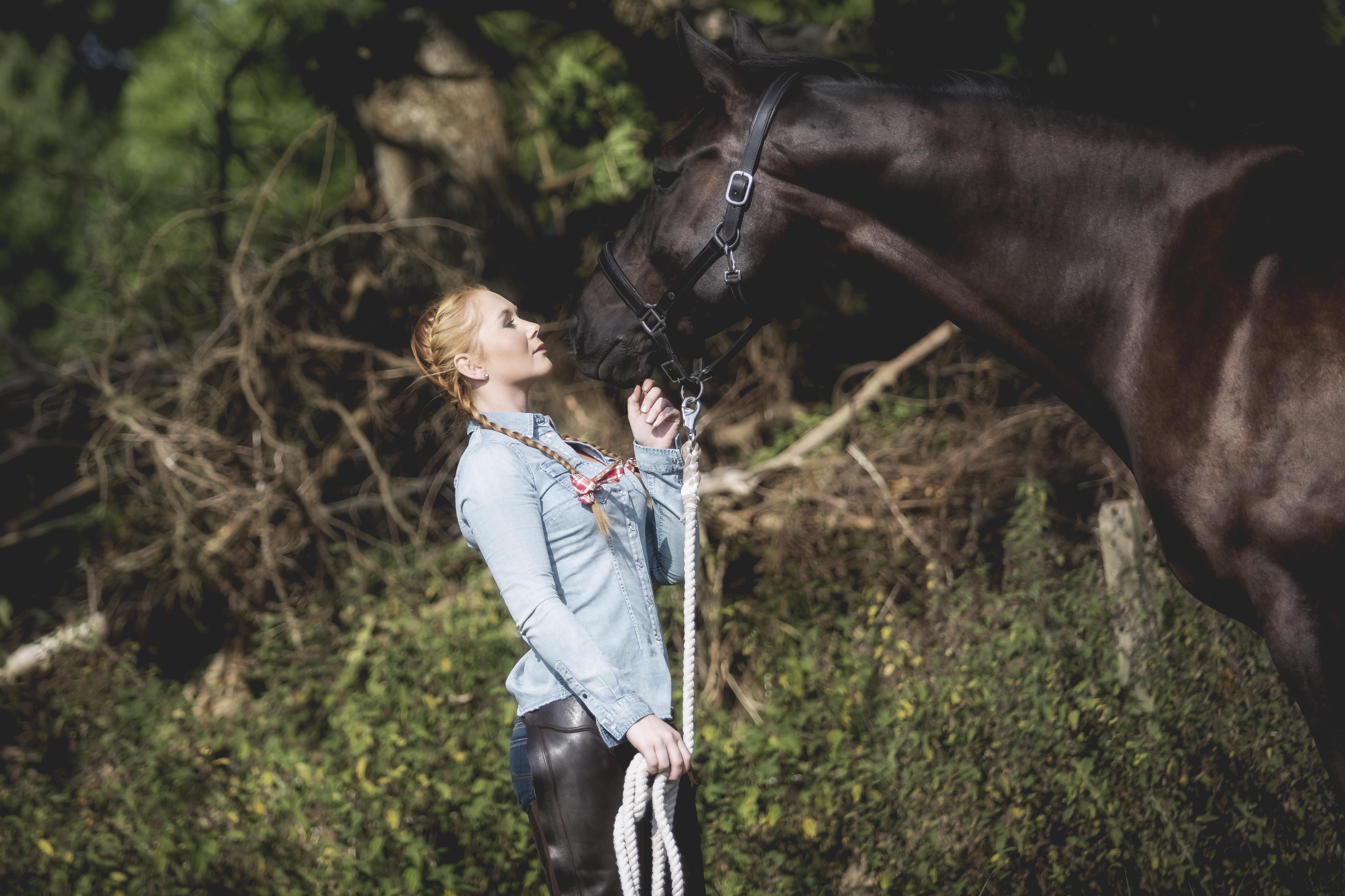 möte med häst fotografering