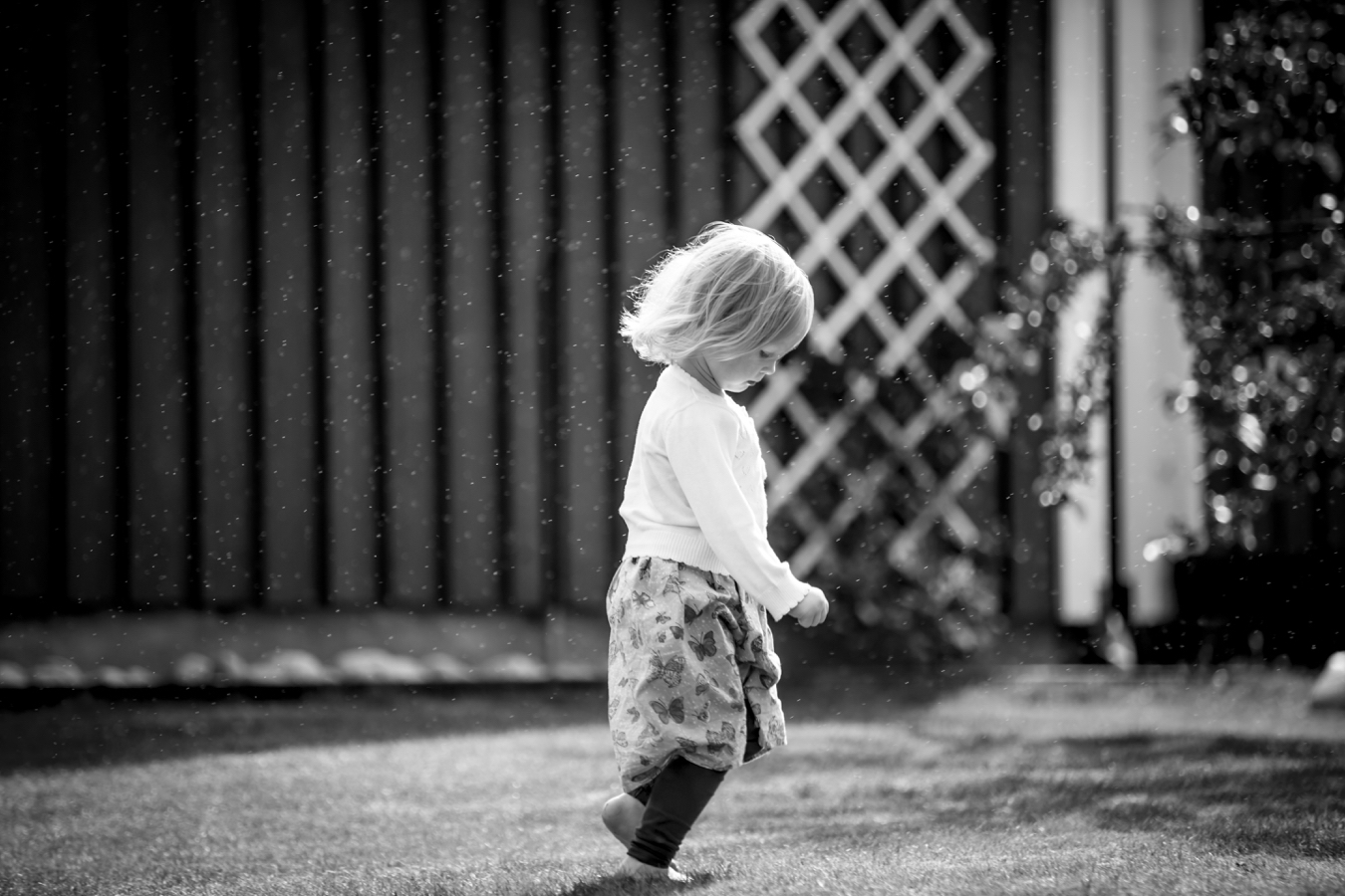 fotograf barn halmstad